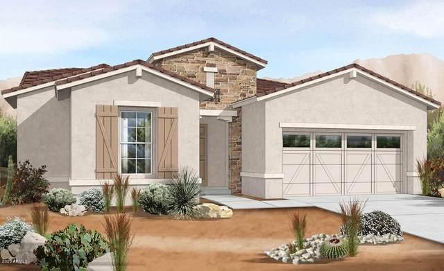 19011 W Rancho Drive, Litchfield Park, AZ 85340 (MLS #6161124) :: Brett Tanner Home Selling Team