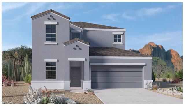 31072 W Avalon Circle, Buckeye, AZ 85396 (MLS #6161159) :: The Laughton Team
