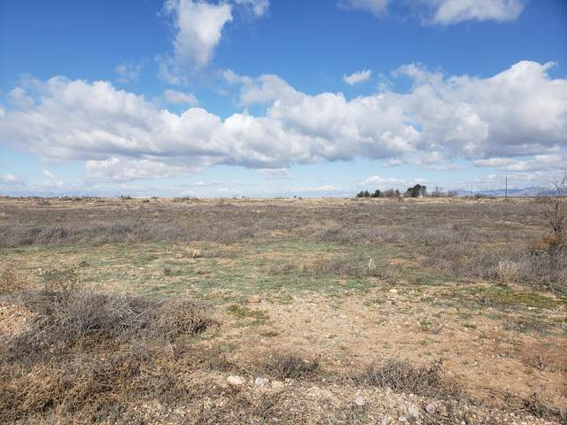 40 acres E Sulphur Springs Road, Willcox, AZ 85643 (MLS #6161167) :: Yost Realty Group at RE/MAX Casa Grande
