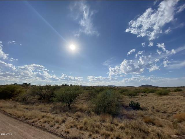 16630 S Cherokee Place, Benson, AZ 85602 (MLS #6161249) :: Conway Real Estate