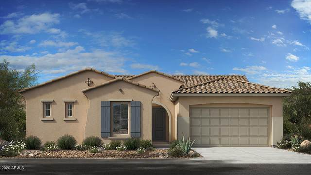 10208 E Thatcher Avenue, Mesa, AZ 85212 (MLS #6161286) :: BVO Luxury Group