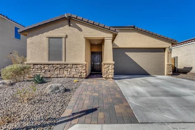 2040 N 213TH Drive, Buckeye, AZ 85396 (MLS #6161292) :: BVO Luxury Group