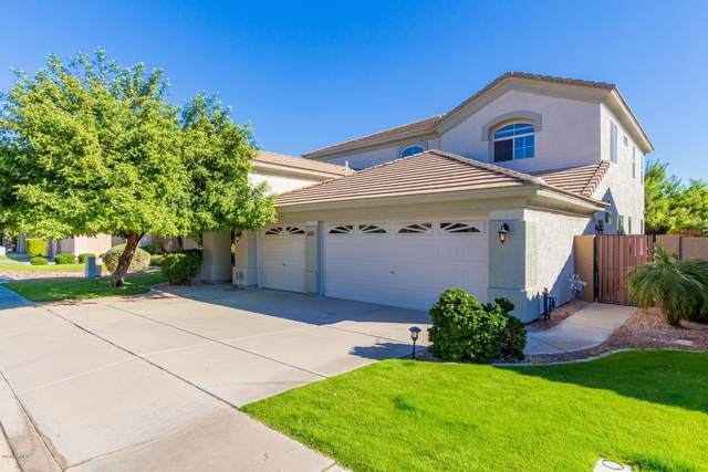 3741 S Barberry Place, Chandler, AZ 85248 (MLS #6161425) :: Yost Realty Group at RE/MAX Casa Grande