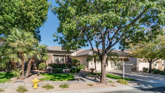 362 W Knight Lane, Tempe, AZ 85284 (MLS #6161478) :: Devor Real Estate Associates