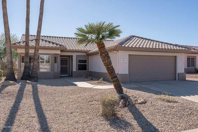 16221 W Starry Sky Drive, Surprise, AZ 85374 (MLS #6161591) :: Long Realty West Valley