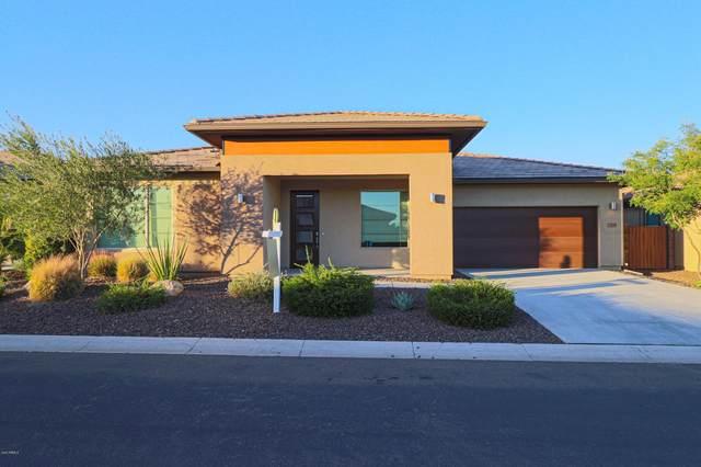 13208 W Hummingbird Terrace, Peoria, AZ 85383 (MLS #6161610) :: The Carin Nguyen Team