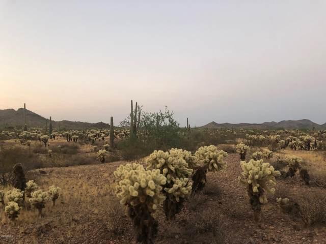 31510 W Galvin Street, Wittmann, AZ 85361 (MLS #6161757) :: Brett Tanner Home Selling Team