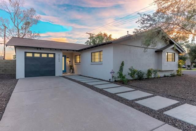 8203 E Turney Avenue, Scottsdale, AZ 85251 (MLS #6161862) :: Maison DeBlanc Real Estate