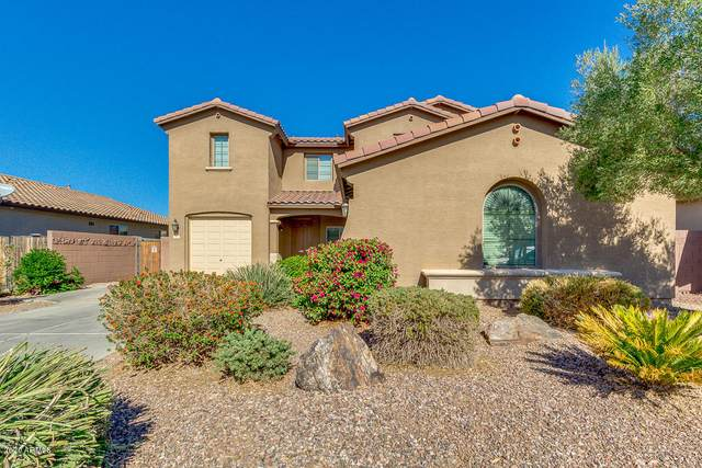 558 W Stanley Avenue, San Tan Valley, AZ 85140 (MLS #6161874) :: Power Realty Group Model Home Center