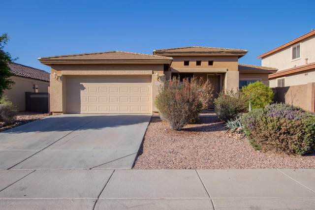 29438 W Whitton Avenue, Buckeye, AZ 85396 (MLS #6161903) :: Lucido Agency