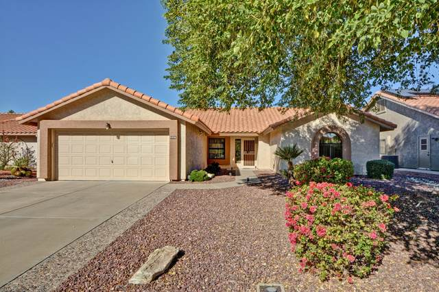 9286 W Behrend Drive, Peoria, AZ 85382 (MLS #6161989) :: The Daniel Montez Real Estate Group
