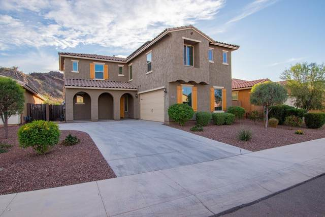 10347 W Alyssa Lane, Peoria, AZ 85383 (MLS #6162027) :: Lucido Agency