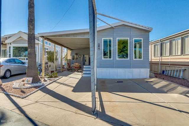1000 S Idaho Rd Avenue #106, Apache Junction, AZ 85119 (MLS #6162059) :: Walters Realty Group