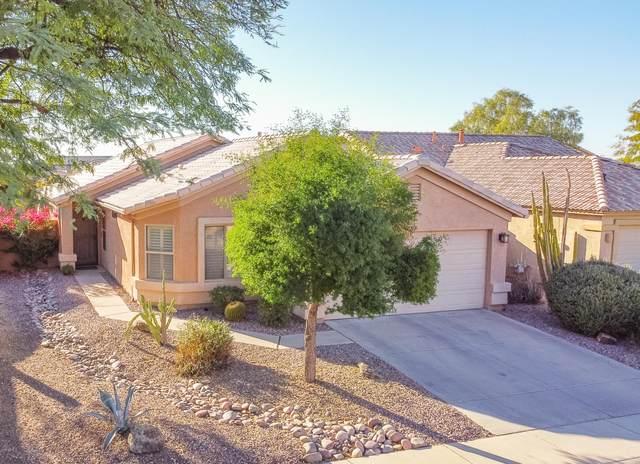 29222 N 51ST Place, Cave Creek, AZ 85331 (#6162123) :: Long Realty Company