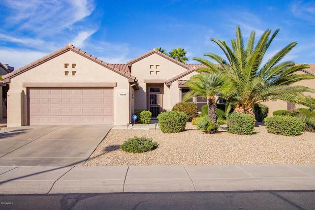 17343 N Havasupai Drive, Surprise, AZ 85374 (MLS #6162242) :: Long Realty West Valley