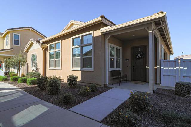3845 E Robert St Street, Gilbert, AZ 85295 (MLS #6162270) :: BVO Luxury Group