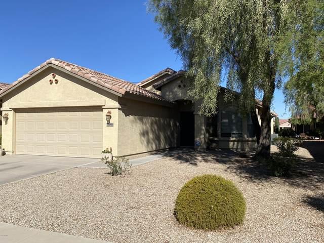 2592 E Santa Maria Drive, Casa Grande, AZ 85194 (MLS #6162274) :: My Home Group