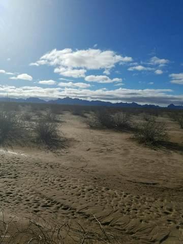 41 W Eagle Ranch Road, Tonopah, AZ 85354 (#6162349) :: Long Realty Company