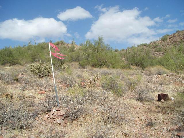 30479 W Madlock Road, Unincorporated County, AZ 85361 (MLS #6162460) :: Kepple Real Estate Group