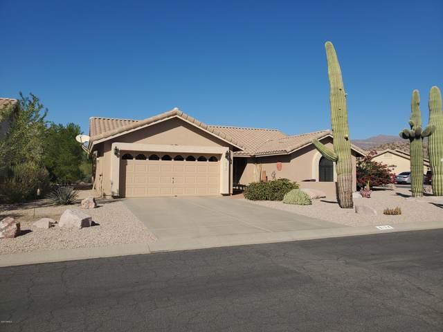 8174 E Lavender Drive, Gold Canyon, AZ 85118 (MLS #6162561) :: D & R Realty LLC