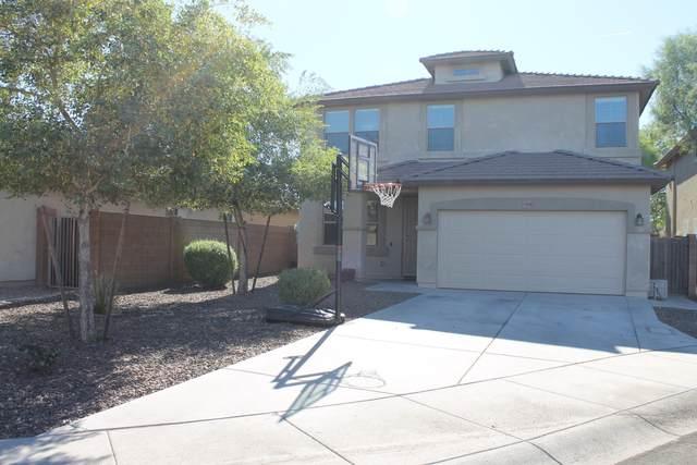 11847 W Robin Court, Sun City, AZ 85373 (MLS #6162831) :: Klaus Team Real Estate Solutions