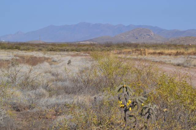 Lot 68 Calle Suprema, Douglas, AZ 85607 (MLS #6162873) :: The Ellens Team