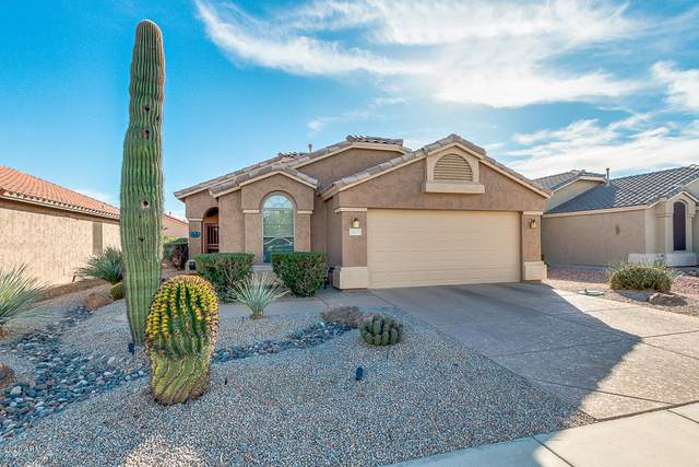 18071 W Spencer Drive, Surprise, AZ 85374 (MLS #6162882) :: Arizona Home Group