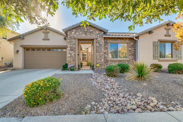 6194 S Rochester Drive, Gilbert, AZ 85298 (MLS #6162986) :: NextView Home Professionals, Brokered by eXp Realty