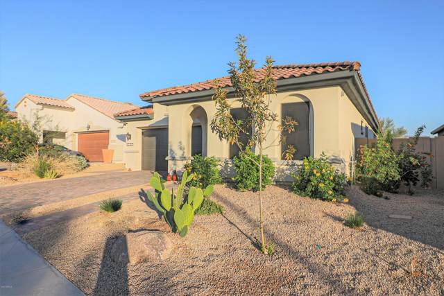 12187 S 184TH Avenue, Goodyear, AZ 85338 (MLS #6163050) :: BVO Luxury Group