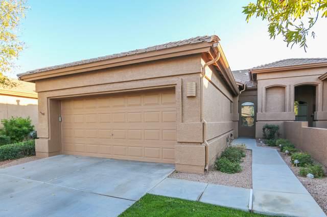 9631 E Rocky Lake Drive, Sun Lakes, AZ 85248 (MLS #6163109) :: Midland Real Estate Alliance