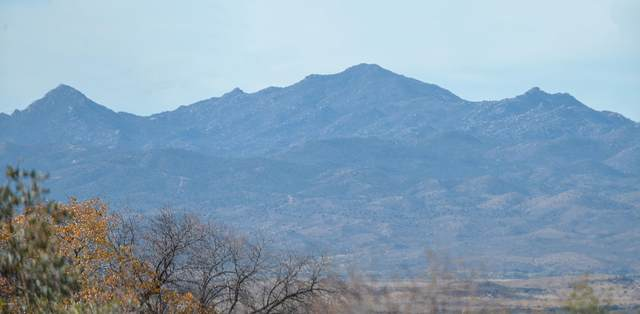 8710 S Highway 89, Wilhoit, AZ 86332 (MLS #6163152) :: Long Realty West Valley