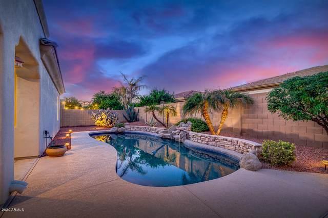 14366 W Alvarado Drive, Goodyear, AZ 85395 (MLS #6163205) :: The Laughton Team