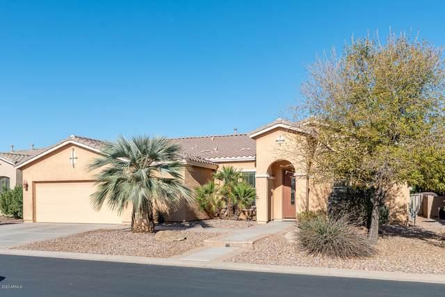 42808 W Misty Morning Lane, Maricopa, AZ 85138 (MLS #6163247) :: Brett Tanner Home Selling Team