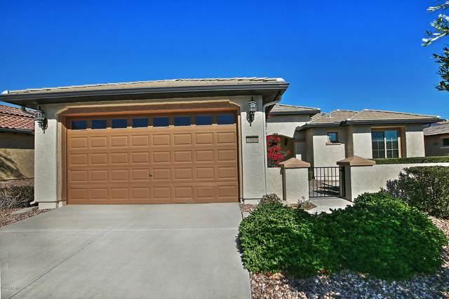 7918 W Discovery Way, Florence, AZ 85132 (MLS #6163263) :: John Hogen   Realty ONE Group