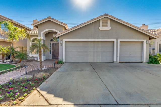 1839 E Marquette Drive, Gilbert, AZ 85234 (MLS #6163304) :: CANAM Realty Group