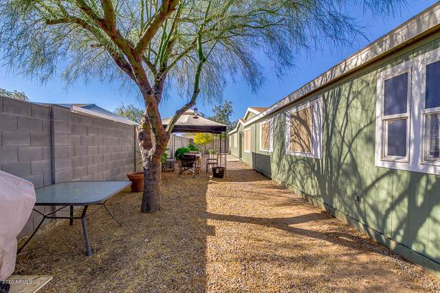 83 N Mulberry Street, Florence, AZ 85132 (MLS #6163309) :: Walters Realty Group