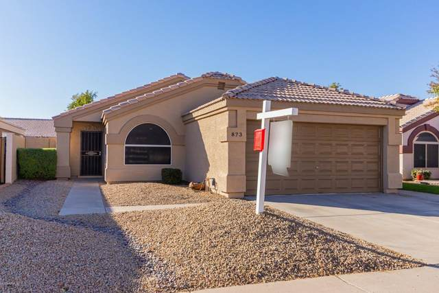 873 E Butler Drive, Chandler, AZ 85225 (MLS #6163382) :: The Laughton Team