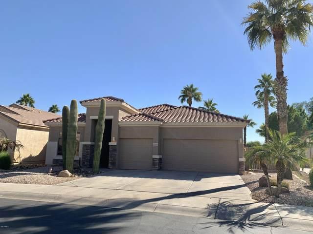 13589 W Holly Street, Goodyear, AZ 85395 (MLS #6163434) :: The Carin Nguyen Team