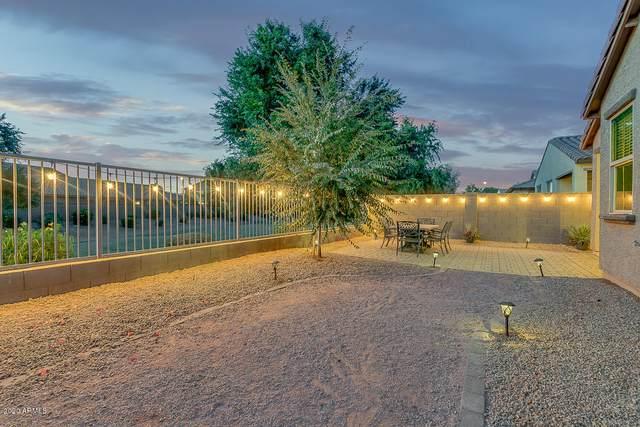 1036 N 168TH Drive, Goodyear, AZ 85338 (#6163514) :: Long Realty Company