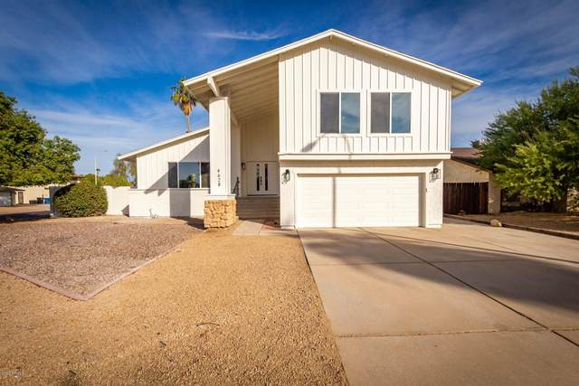 4628 W Jupiter Way, Chandler, AZ 85226 (#6163534) :: Long Realty Company