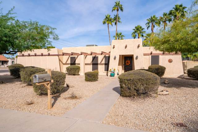 6802 E Friess Drive, Scottsdale, AZ 85254 (MLS #6163556) :: D & R Realty LLC