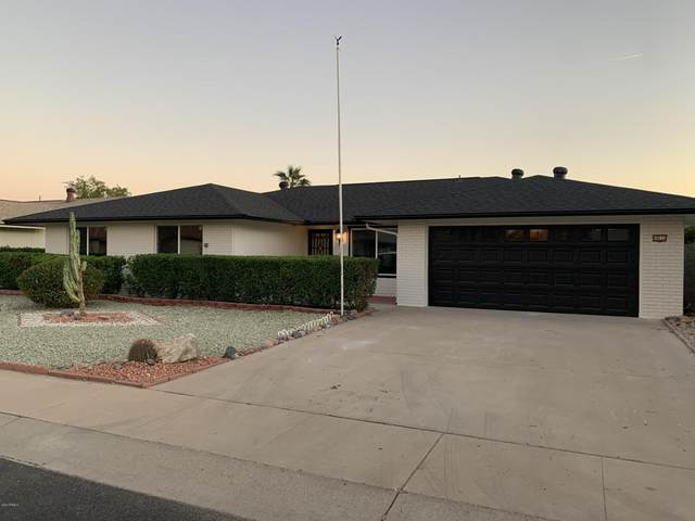 10533 W Oak Ridge Drive, Sun City, AZ 85351 (MLS #6163557) :: Long Realty West Valley