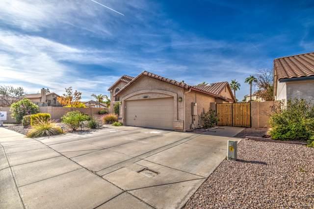 11814 S 46TH Street, Phoenix, AZ 85044 (MLS #6163576) :: The Kurek Group