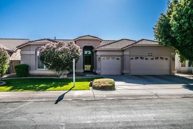319 W Calle De Caballos, Tempe, AZ 85284 (MLS #6163598) :: Arizona Home Group