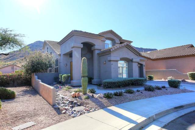 14307 E Thoroughbred Trail, Scottsdale, AZ 85259 (MLS #6163626) :: Power Realty Group Model Home Center