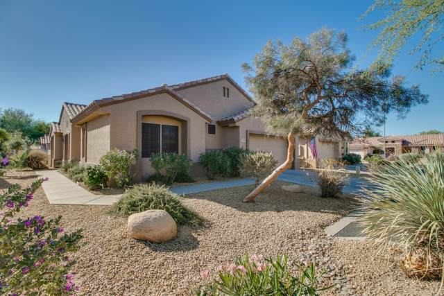20009 N Window Rock Drive, Surprise, AZ 85374 (MLS #6163637) :: Brett Tanner Home Selling Team