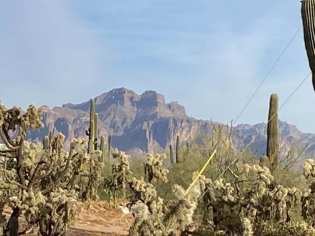 2263 W Saddle Butte Street, Apache Junction, AZ 85120 (MLS #6163738) :: Brett Tanner Home Selling Team