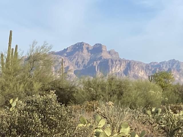 5133 N Delaware Drive, Apache Junction, AZ 85120 (MLS #6163752) :: Brett Tanner Home Selling Team