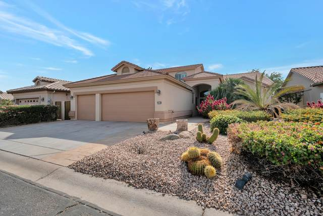 16137 W Fairmount Avenue, Goodyear, AZ 85395 (MLS #6163754) :: Budwig Team | Realty ONE Group