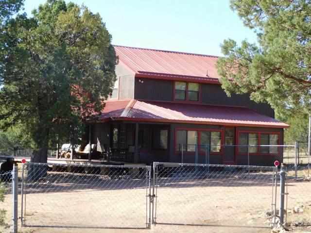 2174 Merganser Drive 4E, Happy Jack, AZ 86024 (MLS #6163791) :: Long Realty West Valley